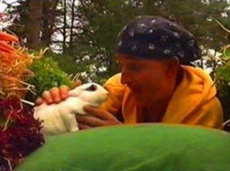 Ernst Bobbie en de rest – Mijn konijn