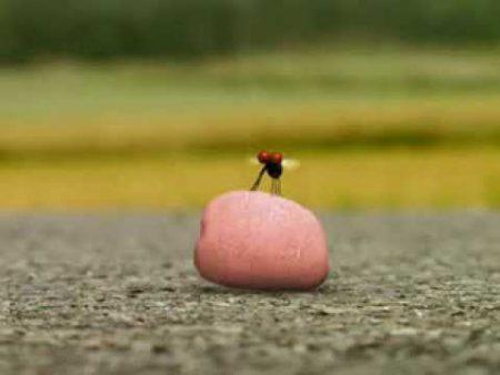Minuscule – Kauwgom