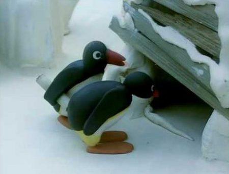 Pingu – Flessen post