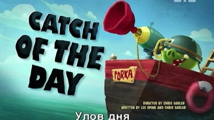 Angry Birds – Catch Of The Day