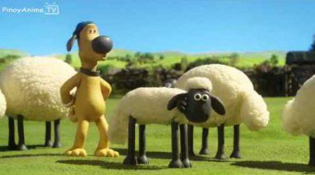 Shaun the sheep – Championsheeps 10