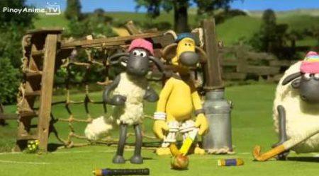 Shaun the sheep – Championsheeps 11
