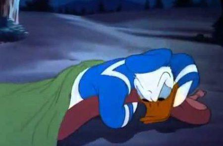 Donald Duck – Wide Open Spaces