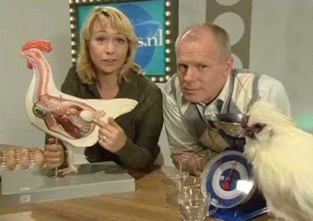 Proefjes.nl 9 – Met welke kant komt een ei uit de kip?