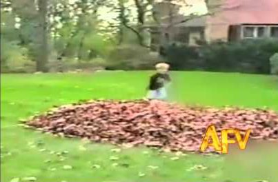 America's Funniest Home Videos 004