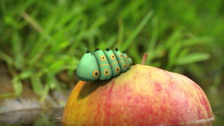 Minuscule – Liefdes Appel
