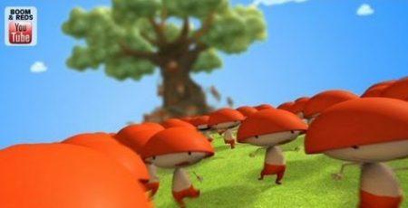 Boom en Reds – Schildpad