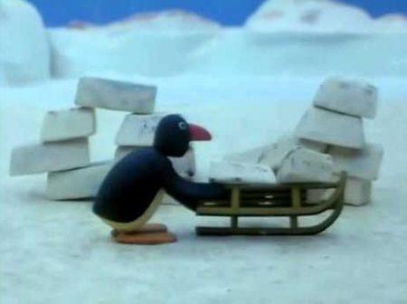 Pingu – Pingu Bouwt Een Iglo