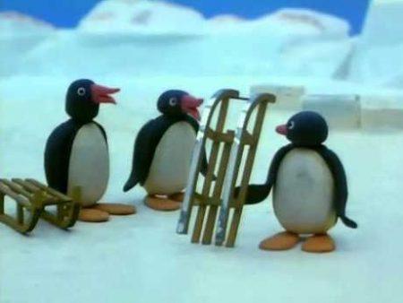 Pingu – Rodelen