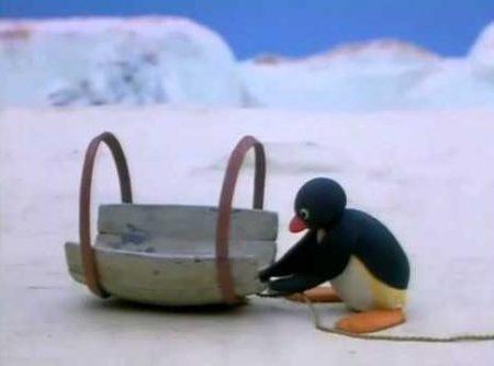 Pingu – Dikke Pret