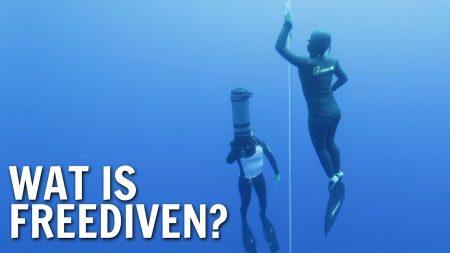 De Buitendienst – Wat Is Freediven?