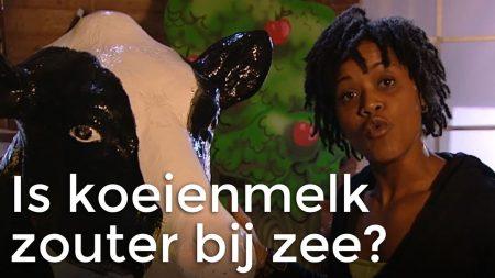 Het Klokhuis – Wordt Melk Zouter Als Koeien Dicht Bij Zee Staan?