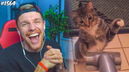 Enzo Knol – Ik Hou Van Kattenfilmpjes! – Vlog #1564