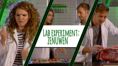 Topdoks – Wie Is Er Sneller? Rachel Of Elbert?! – Lab Experiment