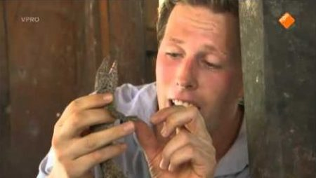 Freeks Wilde Wereld – Tokeh, Vliegende Hagedis, Vleermuizen, Kakkerlakken
