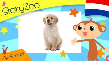 StoryZoo – Babydieren