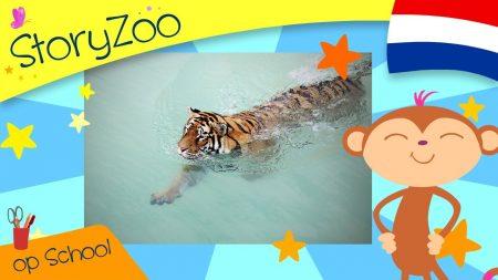 StoryZoo – Tijger