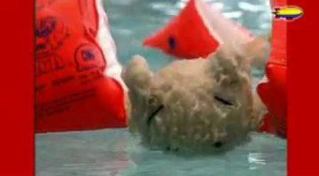 Flip De Beer – Flip Zwemt