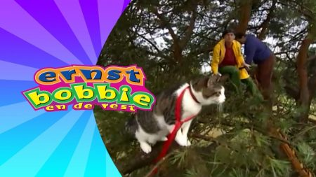Ernst Bobbie en de Rest – De Weggelopen Kat