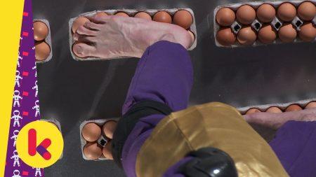 Superbrein – De Kracht Van Een Ei