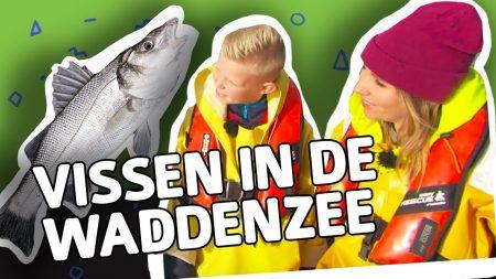 Willem Wever – Hoe Weet Je Welke Vissen Er In De Waddenzee Leven?