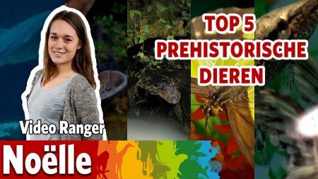 Burgers Zoo – Top 5 Prehistorische Dieren!