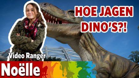 Burgers Zoo – Hoe Jaagden De Dino's Vroeger?