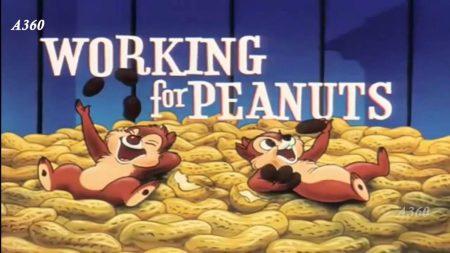 Knabbel en Babbel – Working For Peanuts