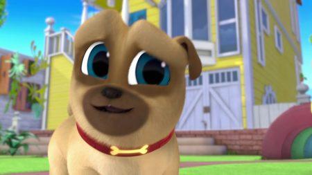 Puppy Vriendjes – De Beste 'Geef-Me-De-Poot'