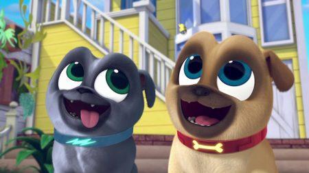 Puppy Vriendjes – Dieren Dozendag