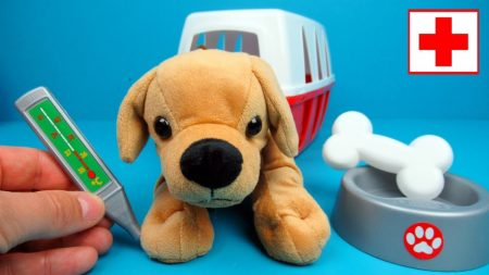 Dierendokter Speelset Medical Ecoiffier – Uitpakken en Spelen