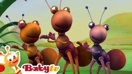 Big Bugs Band – Traditionele Africaanse Muziek