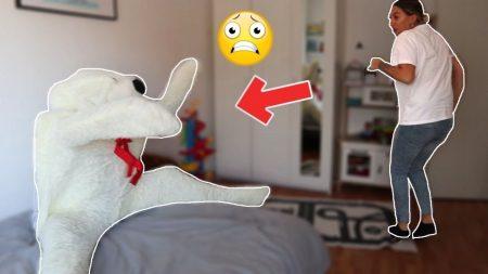 Familie Lakap – Mega Teddybeer Komt Tot Leven Prank! – Vlog #315