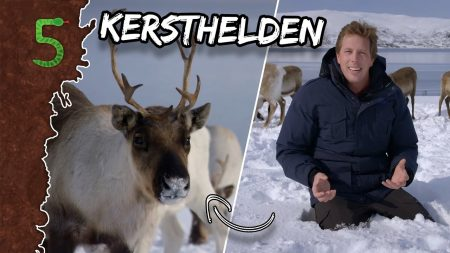 FreekTV – Kersthelden!