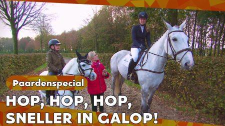 Zappsport – Britt Helpt Fien Over Haar Angst Voor Het Paard 🐴 Heen – Paardenspecial