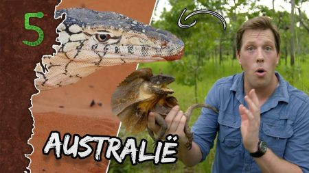 FreekTV – Check Deze Australische Bazen!