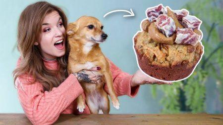 OnneDi – Pupcakes Met Dolly Maken