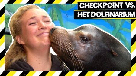 Checkpoint – Het Dolfinarium vs Checkpoint