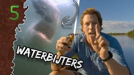 FreekTV – Waterbijters!