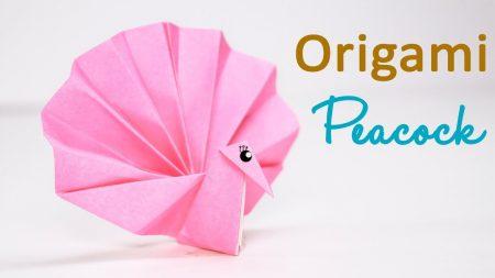 Origami – Pauw