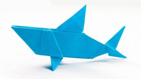 Origami – Haai