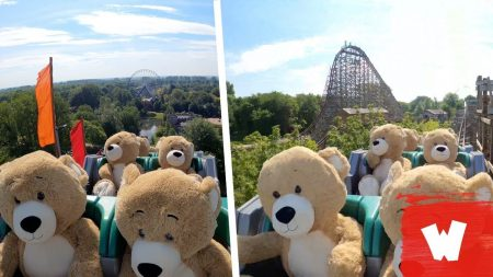 Knuffelberen in #UNTAMED ? – Walibi Holland