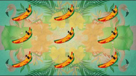 Conkarah feat. Shaggy – Banana / Banana (DJ Fle – Minisiren Remix)
