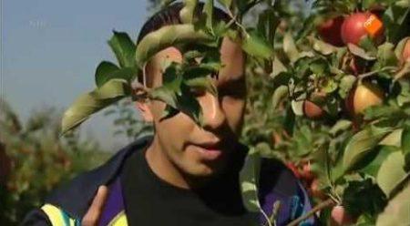Huisje Boompje Beestje – De Appelboom