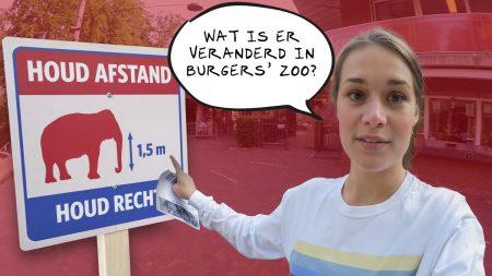 Burgers Zoo – Noëlle Is Terug! ?