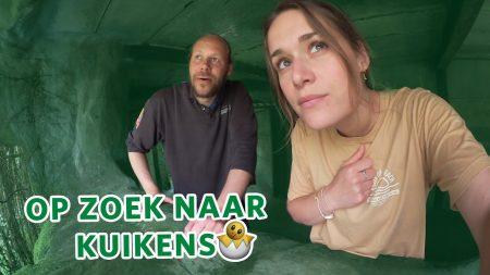 Burgers Zoo – 🥚 Op Zoek Naar Jonge Vogels In De Bush! 🥚