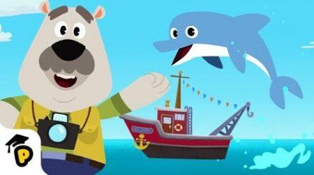 Dr. Panda – Het Geluid Van Dolfijnen!