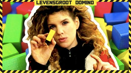 Checkpoint – Levensgroot Domino