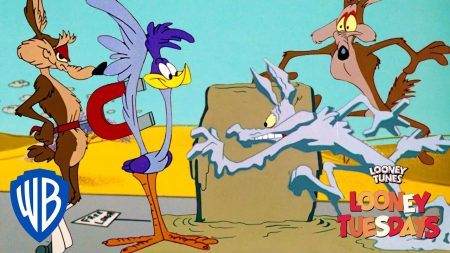 Roadrunner vs Wile E Coyote – Coyote's Best Failed Plans