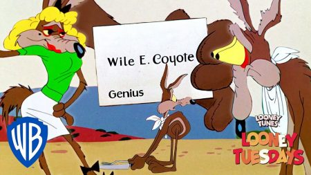 Roadrunner vs Wile E Coyote – The Best (Or Worst) of Wile E. Coyote
